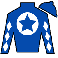My Fever Silks