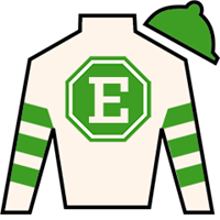 Biddy Duke Silks