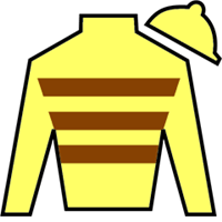 Classic Point Silks