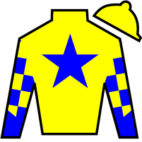Diamond N Simon Silks