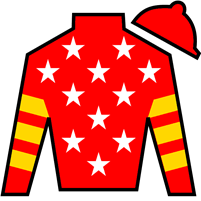 Noble Indy Silks