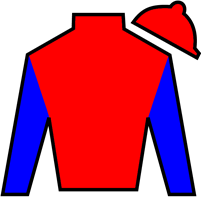 Primo Touch Silks