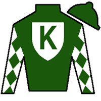 New Rules Silks