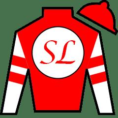 Leofric Silks