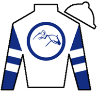 Larry Hirsch Silks