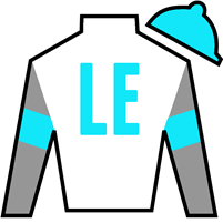 For My Elbi Silks