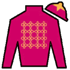 Chemical Charge Silks