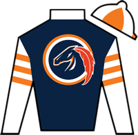 Larry Birdstone Silks