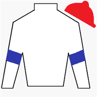 Lloyd J. Williams Silks