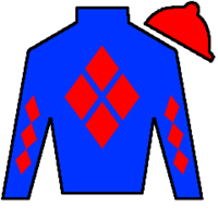 To The Stars Silks