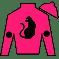 Prophet's Cat Silks