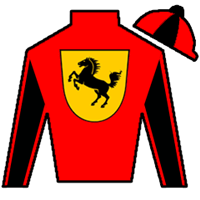 Magic Mark Silks