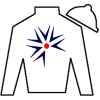 Majestic Harbor Silks