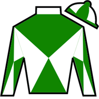 Mighty Scarlett Silks