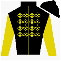 Rebel Streak Silks