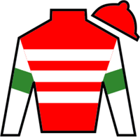 Reign Of Kings Silks
