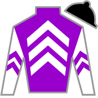 Competitive Edge Silks