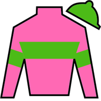 Sporting Holiday Silks