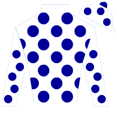 One Count Silks
