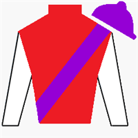 Our Ivanhowe Silks