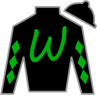 Promise Keeper Silks