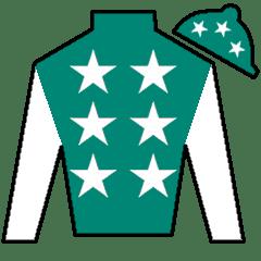 Pakistan Star Silks