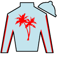 Game Day Drama Silks