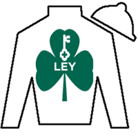 Little Mary E Silks