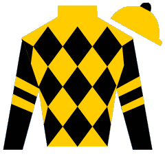Court of Dreams Silks