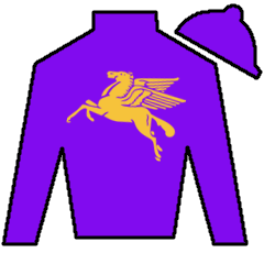Two Fifty Coup Silks