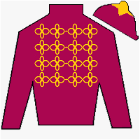 Ship Of Dreams Silks