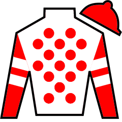King for a Day Silks
