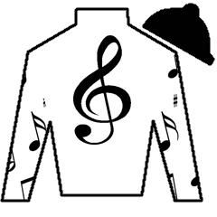 Lost in the Parade Silks