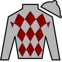 Niko's Dream Silks