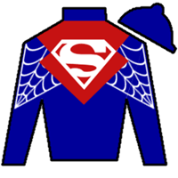 Shades Of Victory Silks