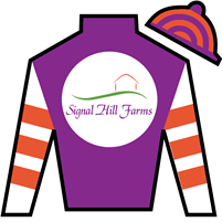 Point Him Out Silks