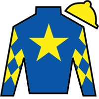 Patsy's Holiday Silks