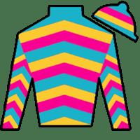 Super Jockey Silks