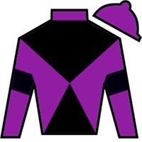 Warrior's Charge Silks