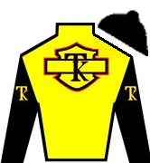 Travel Advisory Silks