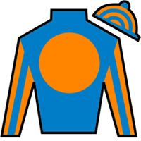 Shaftesbury Silks