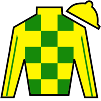 Battle Buster Silks