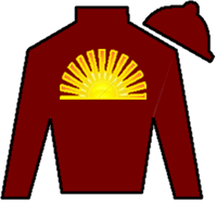 Mr Ritz Silks