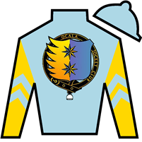 True Ranger Silks