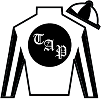 Thebigfundamental Silks