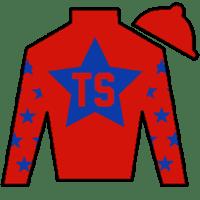 Tommy C. Short Silks