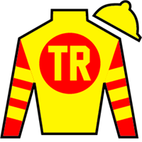 Bodexpress Silks