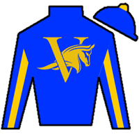 Stormy's Song Silks