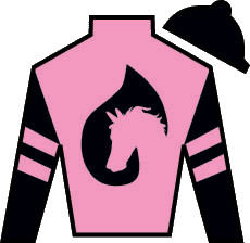 Silver Medallion Silks