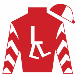 Oxford Lane Silks